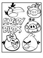 Angry Birds 6